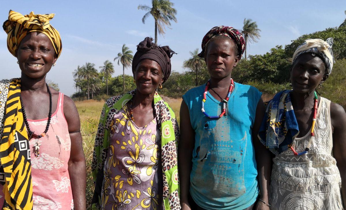Reisbäuerinnen in der Casamance - sie kämpfen mit versalzenen Böden und zu spät einsetzenden Regenfällen. Aber es gibt eine Lösung...